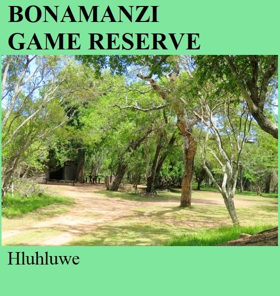 Bonamanzi Game Reserve - Hluhluwe