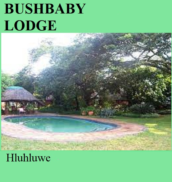 Bushbaby Lodge - Hluhluwe