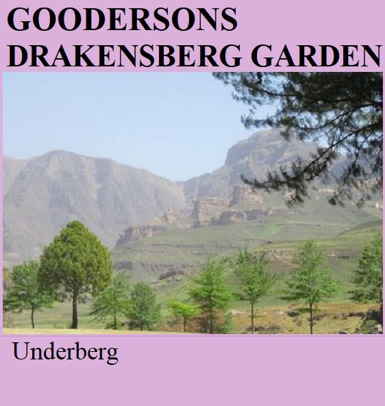 Gooderson Drakensberg Garden - Underberg