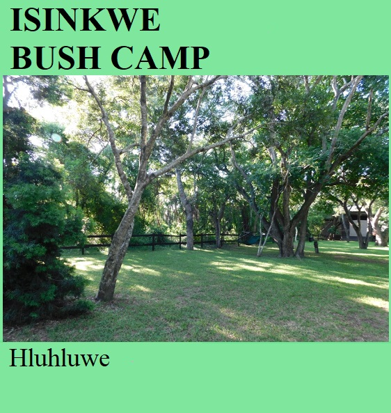Isinkwe Bush Camp - Hluhluwe
