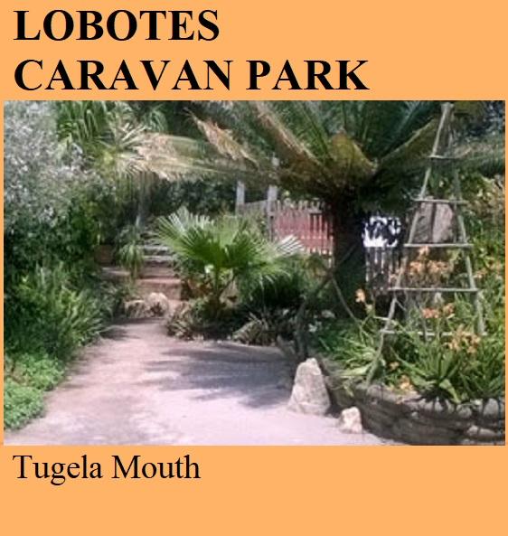 Lobotes Caravan Park - Tugela Mouth