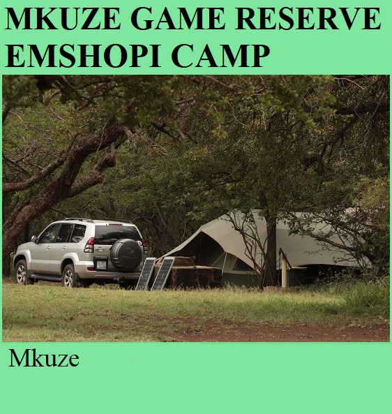 Mkuze Game Reserve Emshopi Camp - Mkuze