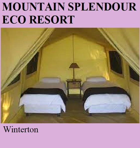 Mountain Splendour Eco Resort - Winterton