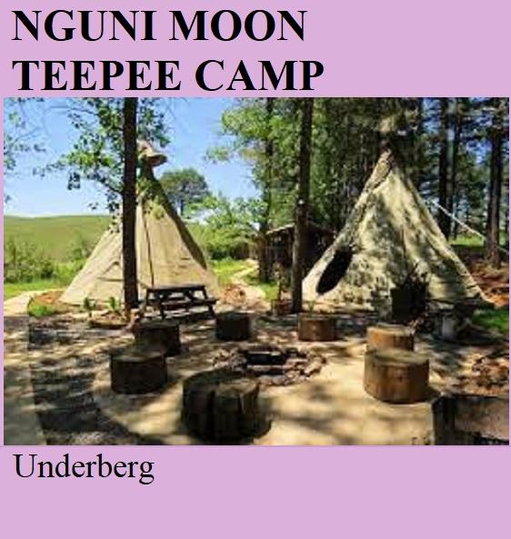 Nguni Moon Teepee Camp - Underberg