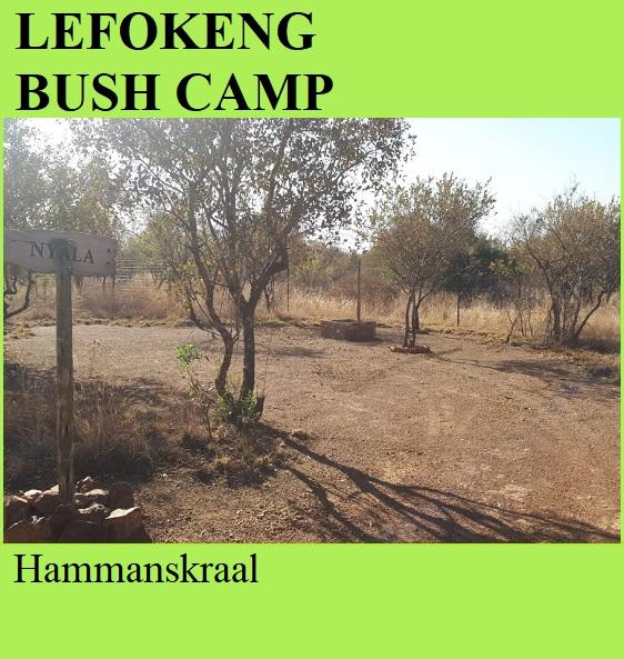Lefokeng Bush Camp - Hammanskraal