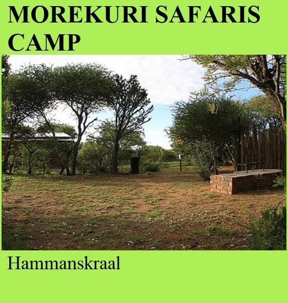 Morekuri Safaris Camp - Hammanskraal