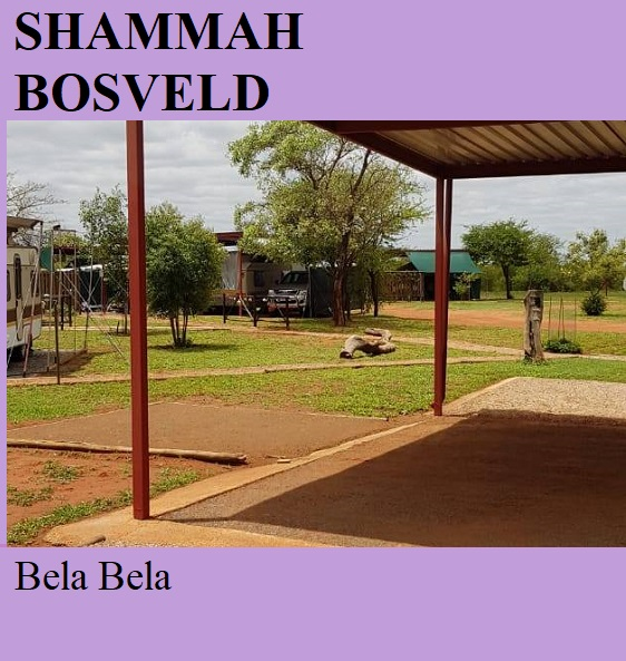 Shammah Bosveld - Bela Bela