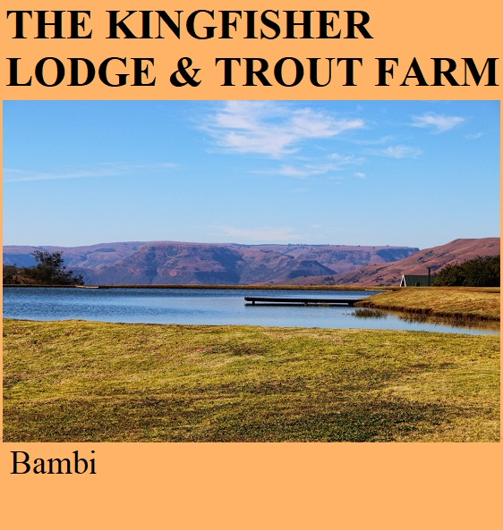 The Kingfisher Lodge and Trout Farm - Bambi