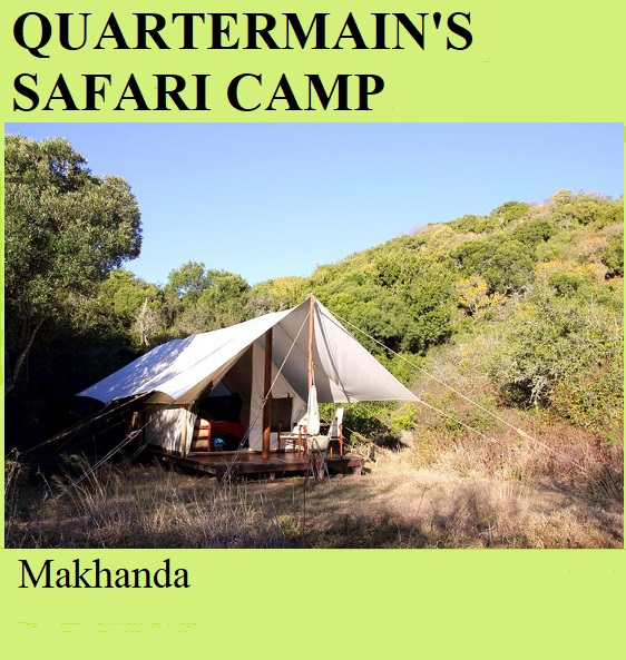 Quartermain's Safari Camp - Makhanda